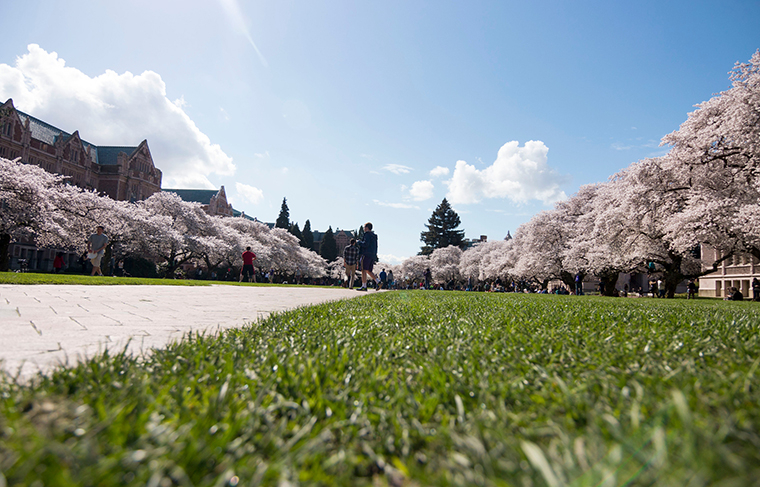 UW College of Education is ranked the #2 public education school. View of the Quad in Spring.